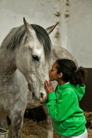 Name a horse!!!!!