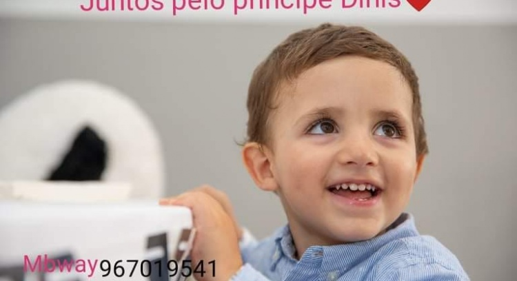 Vamos ajudar o Princípe Dinis