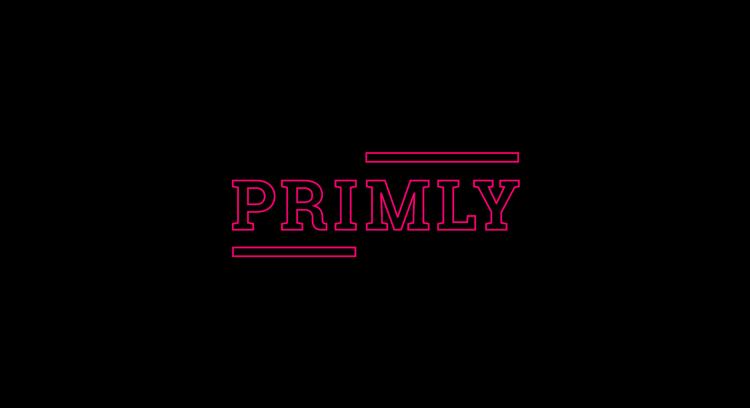 Primly - Recording of the 1º Album