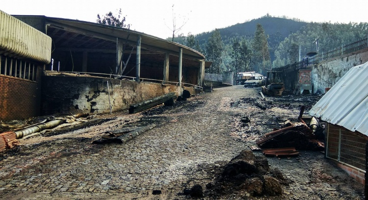 Help Us get a Family victim of the dreadful wildfires on the 15th Ocotober back up on its feet again.