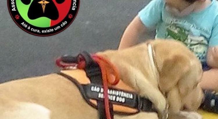 O João precisa de um Cão de Assistência. Vamos todos ajudá-lo!