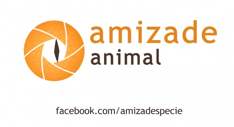 Animal Friendship - Crowdfunding Campaign 2015