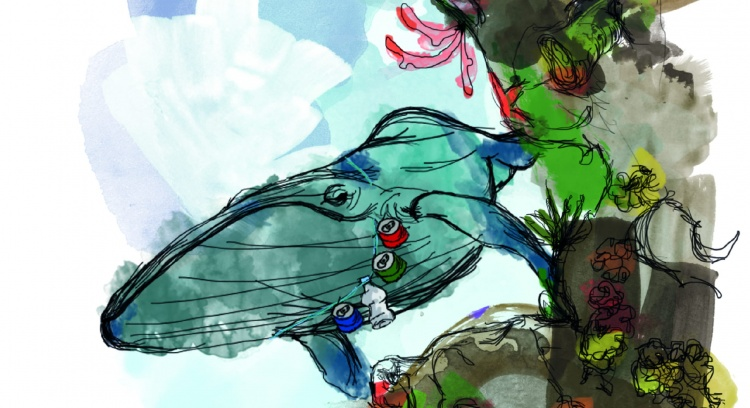 Graciosa, A Baleia Vaidosa