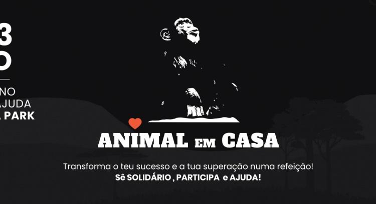 Animal em Casa