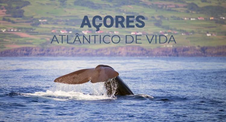 Açores - Atlântico de vida
