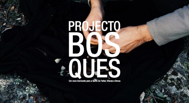 Projecto Bosques - Um novo horizonte para a Serra do Feital, Vilares e Broca