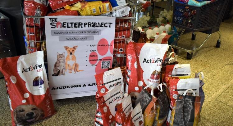 Ajudem-nos a alimentar os animais abandonados
