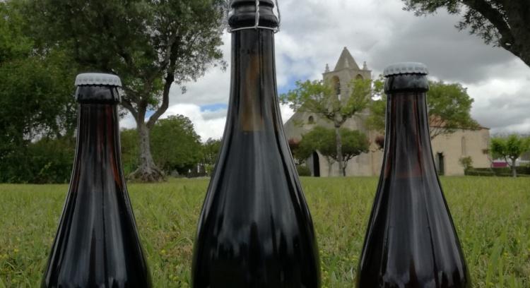 Cerveja Artesanal - dar Vida à Diva