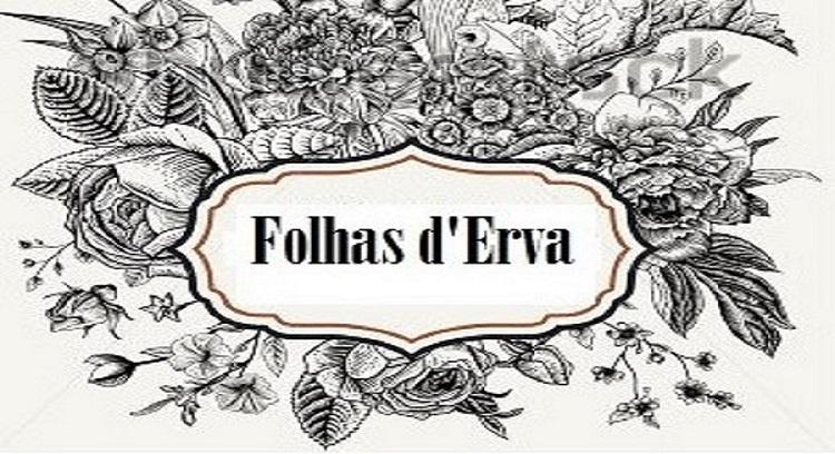 Cafe, Bookstore, Flower house 'Folhas d'Erva'