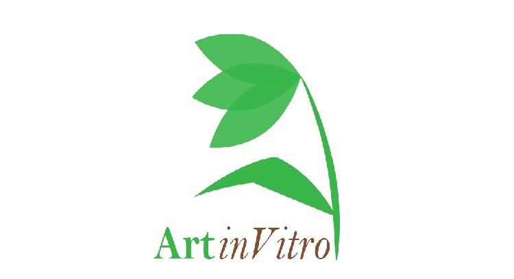 ArtinVitro, Plantas ornamentais que só necessitam de Luz!