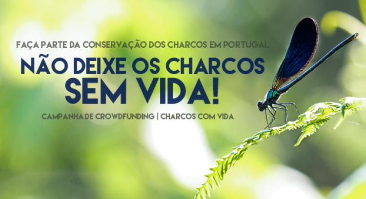 Não deixe os Charcos sem Vida - CIIMAR/UP