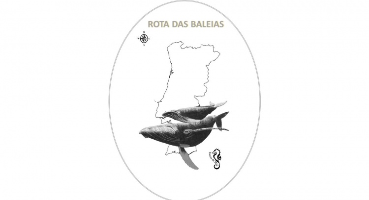Route of the Whales