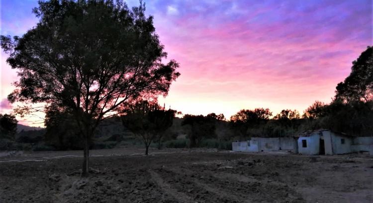 Quinta da Ribeira - Agricultura Biológica